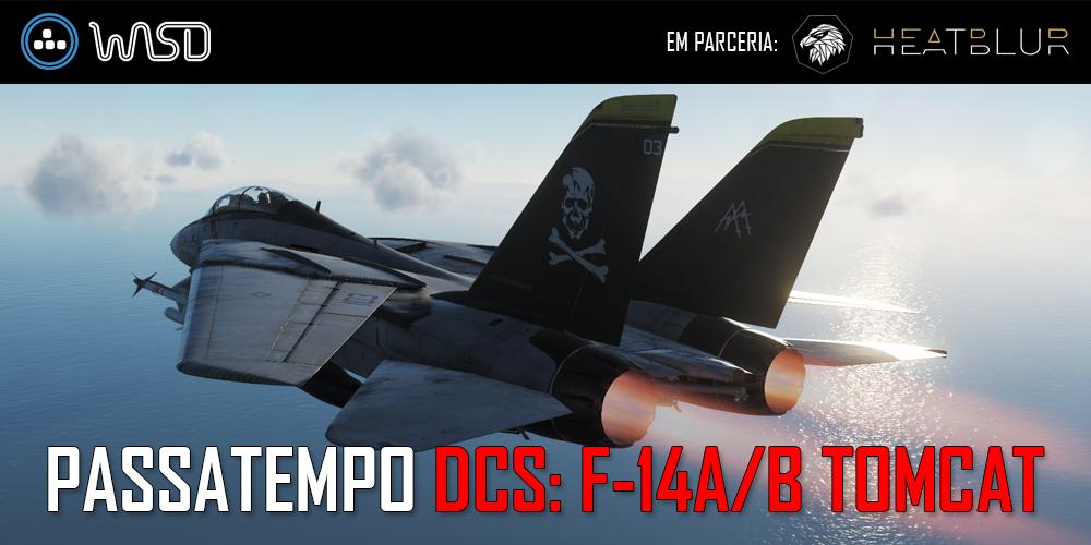 [Resultados] DCS: F-14A/B Tomcat