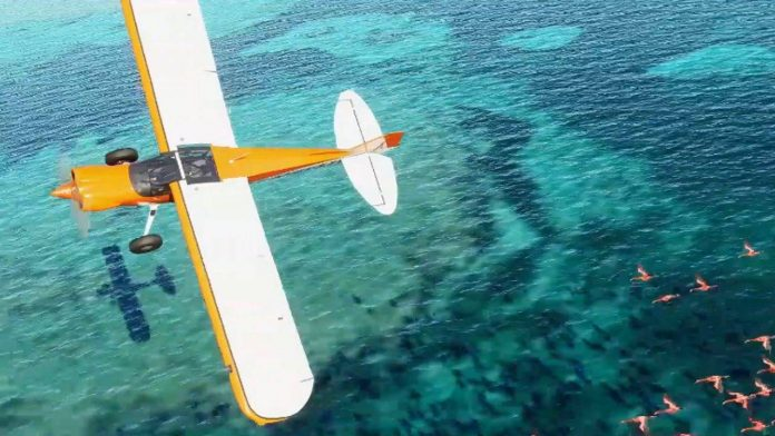 Microsoft Flight Simulator apontado para 2020 - WASD