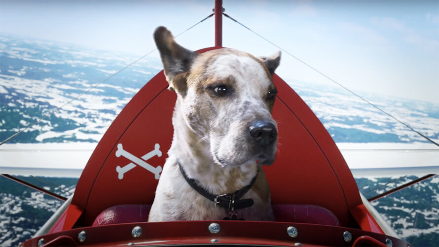 Aviões, cães e Master Chief, é assim o anúncio de Natal da Xbox